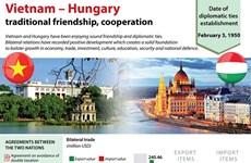 Vietnam-Hungary economic ties have large room to grow
