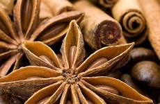 Spices could be nice export earner
