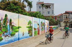 Flower roads in Hanoi's Dan Phuong district