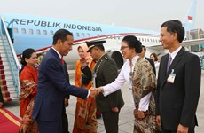 Indonesian President Widodo pays State visit to Vietnam