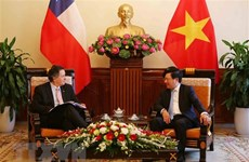 Vietnam sees Chile as leading Latin-American partner: Deputy PM