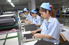 McKinsey report: Vietnam among economic outperformers
