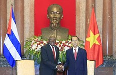 Vietnam determined to continue strengthening solidarity with Cuba