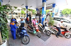 Bio-fuel consumption increases 31.8 percent