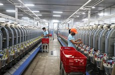 HCM City's industrial production sustains upward trend