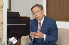 Vietnam-Japan relations develop stably in all aspects: Japanese politician