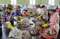 Ministry works to implement SME support law effectively