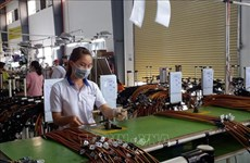 Ba Ria-Vung Tau- a magnet for FDI projects