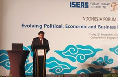 Singapore's investment in Indonesia surges