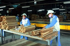 Forestry exports estimated at 6.64 billion USD in nine months