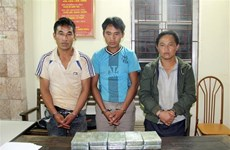 Drug smugglers caught in Son La
