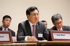 FM Pham Binh Minh co-chairs ASEAN-GCC ministerial meeting