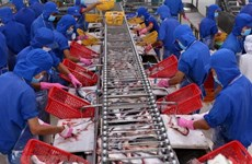 Vietnam's export value to US reaches record high in August