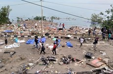 Indonesia: Death toll from earthquake, tsunami amounts to 384