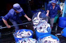 Agro-forestry-fishery exports rise 9.3 percent in nine months
