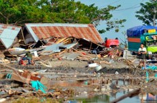 Death toll from Indonesia quakes, tsunami hits over 830