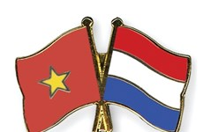 Vietnam, Netherlands share experience in media policies