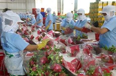 Tien Giang works towards 2.65 billion USD in export this year