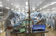 VN to introduce criteria evaluating health of enterprises