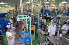 FDI projects provide impetus for Quang Nam's economy