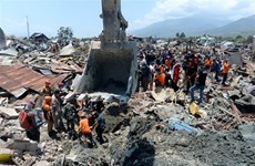 Millions of litres of fuel transported to Indonesia's tsunami-hit areas