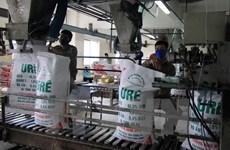SE Asia largest market of Vietnam's fertilizer