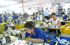 Mekong Delta provinces attract more foreign investment