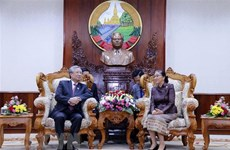 Vietnamese Party delegation visits Laos