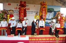 Japanese seafood processing plant built in Binh Dinh
