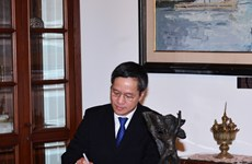 Vietnam treasures global multilateral mechanisms: Ambassador to Indonesia