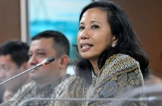 Indonesia calls on investors to invest in 80 projects