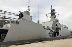 Vietnam participates in RoK Navy's International Fleet Review