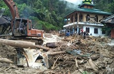 Indonesia records surge in number of deaths in landslides