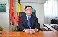 Vietnam boosts cooperative ties with Belgium, EU: diplomat