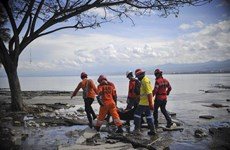 ASEAN's centre aids Indonesia's twin-disaster victims