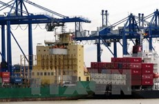 Export turnover to top 239 billion USD this year