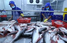 Tra fish exports likely to hit 2.1 billion USD this year