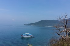 Tourism boom threatens Cham Island ecosystem