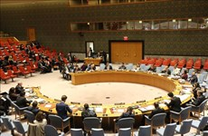 Vietnam urges continued reform of UN development system