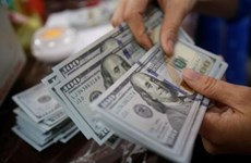 Reference exchange rate goes up 2 VND on October 23