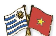 Ceremony marks Vietnam-Uruguay 25-year ties