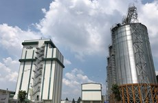 Foreign animal feed firms expand in Vietnam