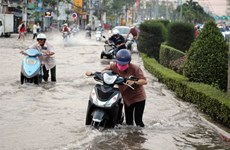 Solutions needed to ease Mekong Delta flooding