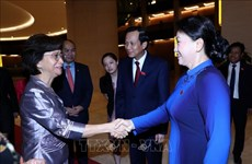 Vietnam attaches importance to promoting gender equality: NA leader