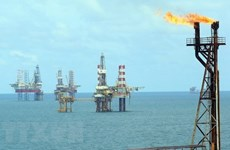 Petroleum law to be revised to facilitate sustainable growth of oil sector