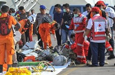 Vietnam extends sympathy to Indonesia over Lion Air plane crash