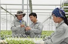 Southern province develops hi-tech farms