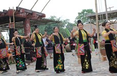 Cultural activities in November highlight great national unity