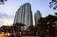 HCM City to auction 14,000 apartments