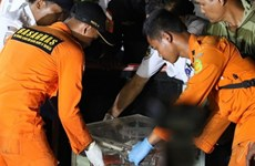 Crashed Indonesian plane had faulty air speed indicator